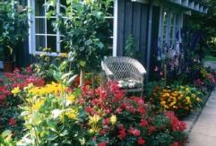 Gartenplanung, Gartentermine 2018