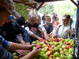 Apfelfeste
