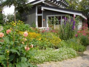 Stauden-Garten