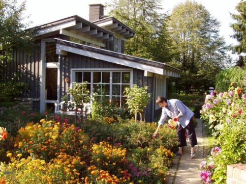 Staudenbeet am Gartenhaus