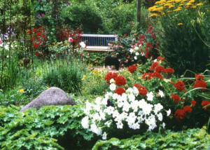 Garten05