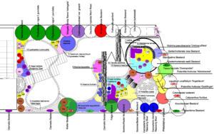 Wirtgen-Pflanzplan2